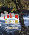 The Lynching Stream Book Cover
